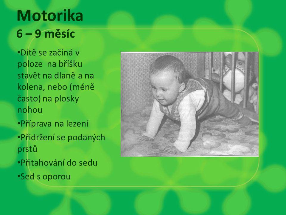 Motorika 6 – 9 měsíc Dítě se začíná v poloze na bříšku stavět na dlaně a na kolena, nebo (méně často) na plosky nohou.