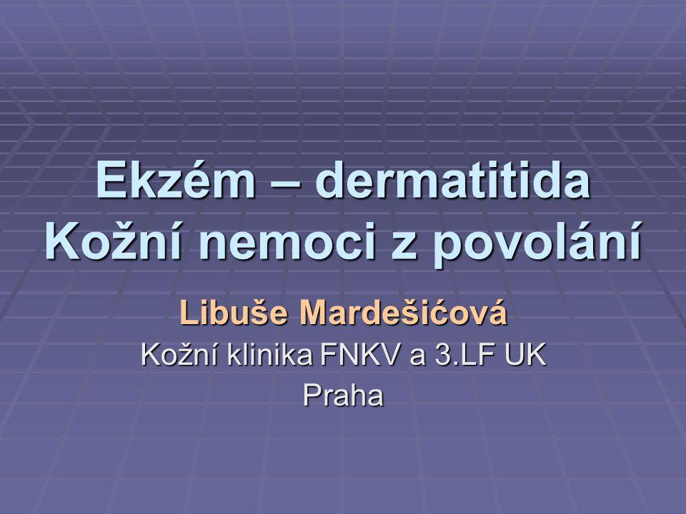 Ekzém – dermatitida Kožní nemoci z povolání