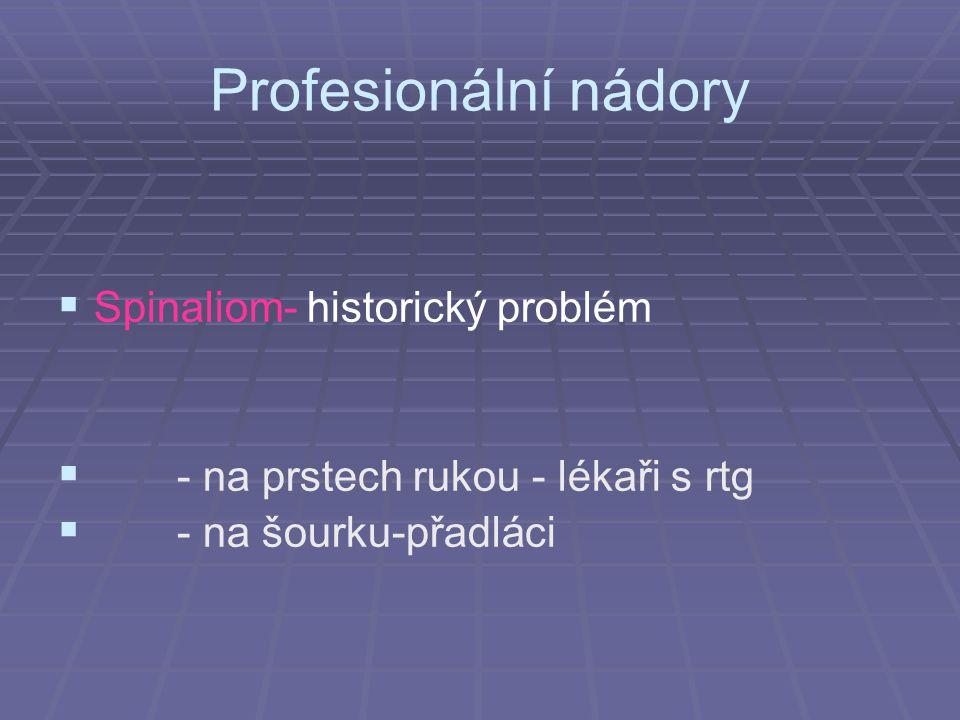 Profesionální nádory Spinaliom- historický problém