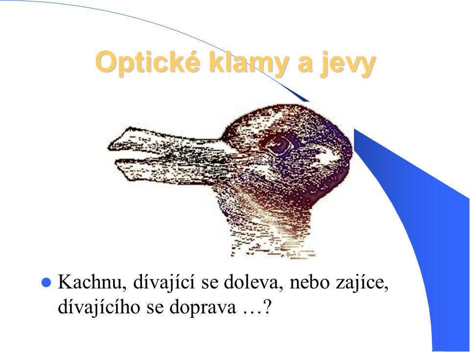 Optické klamy a jevy Kachnu, dívající se doleva, nebo zajíce, dívajícího se doprava …