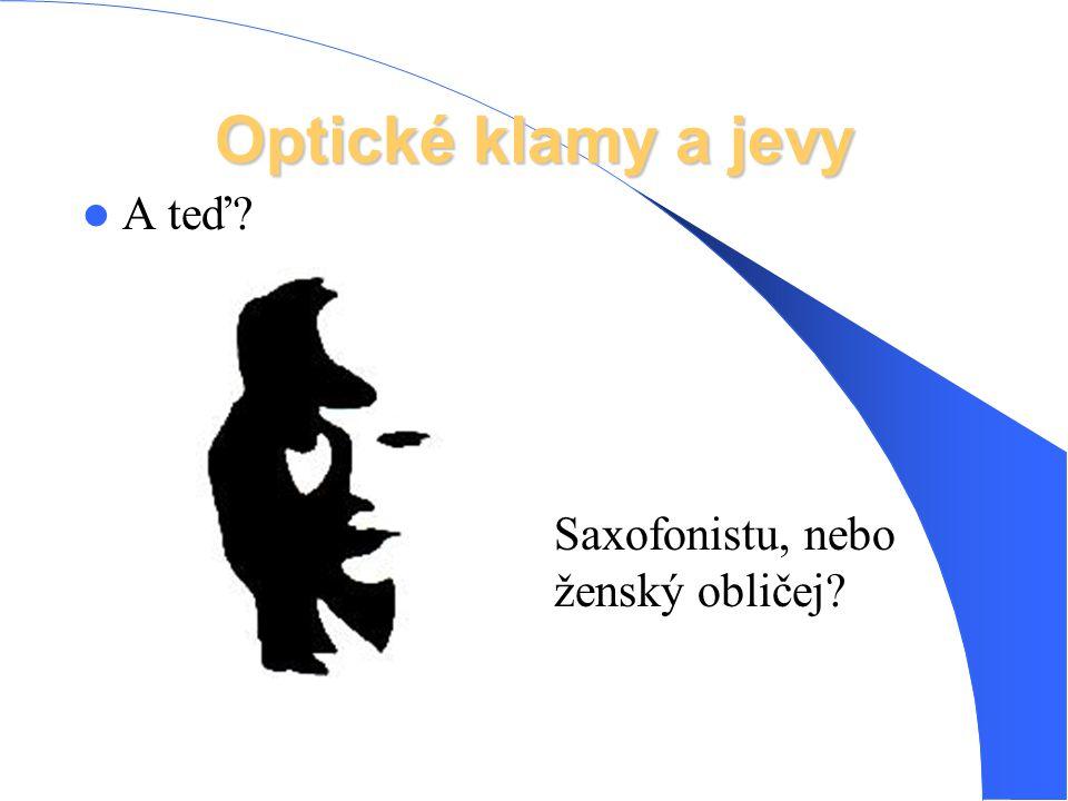 Optické klamy a jevy A teď Saxofonistu, nebo ženský obličej