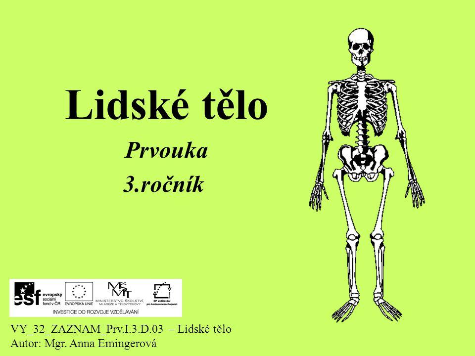 Lidské tělo Prvouka 3.ročník VY_32_ZAZNAM_Prv.I.3.D.03 – Lidské tělo