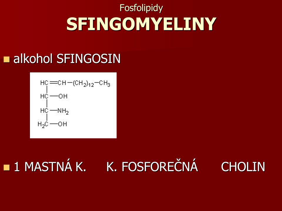 Fosfolipidy SFINGOMYELINY