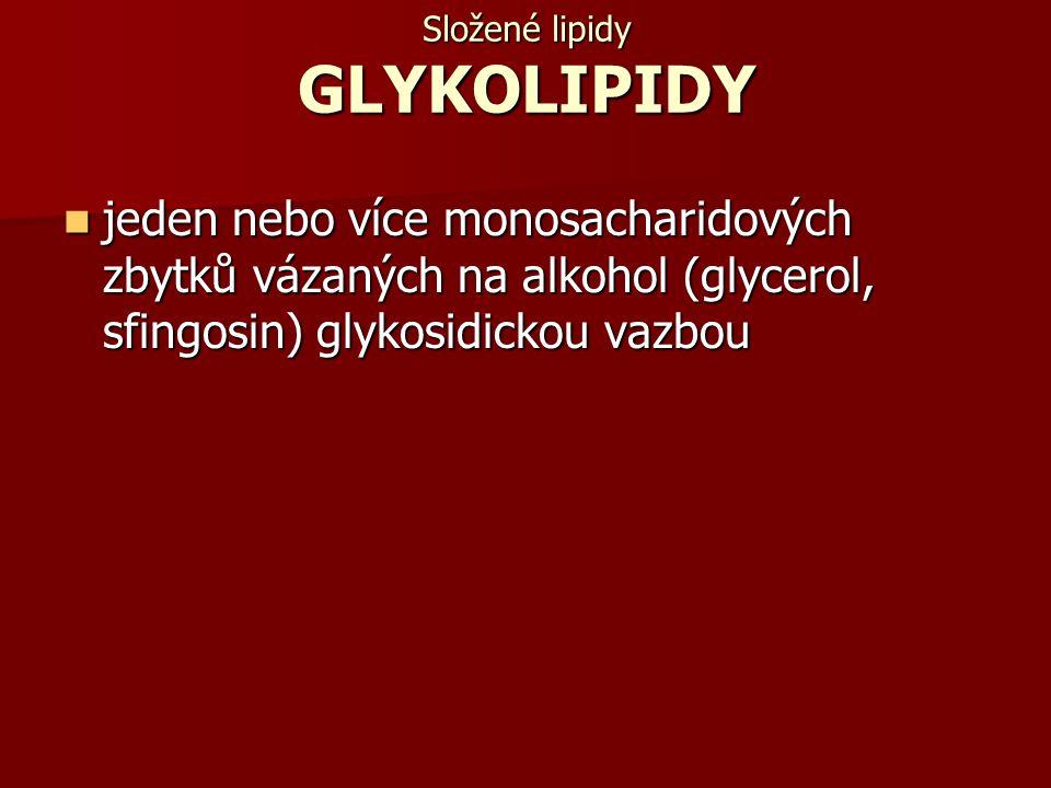 Složené lipidy GLYKOLIPIDY