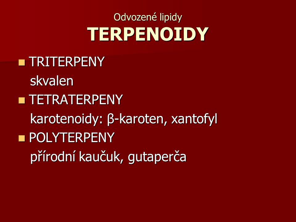 Odvozené lipidy TERPENOIDY