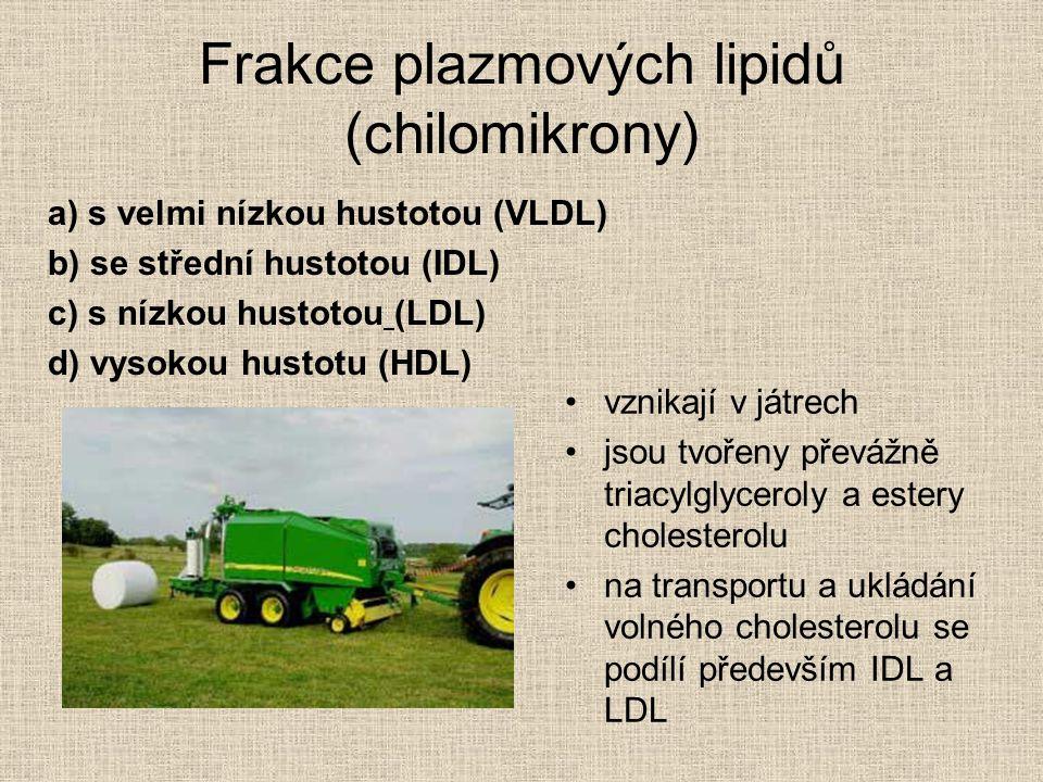 Frakce plazmových lipidů (chilomikrony)