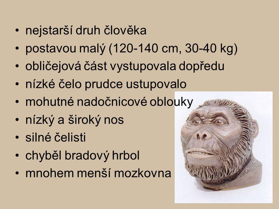 nejstarší druh člověka