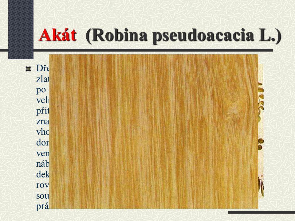 Akát (Robina pseudoacacia L.)