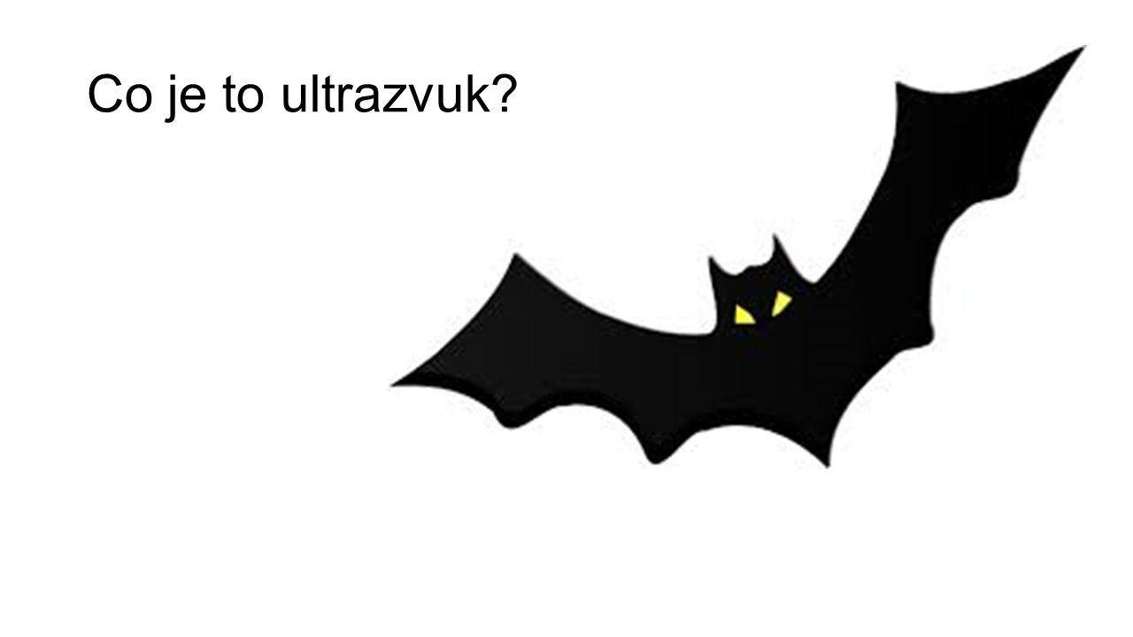 Co je to ultrazvuk