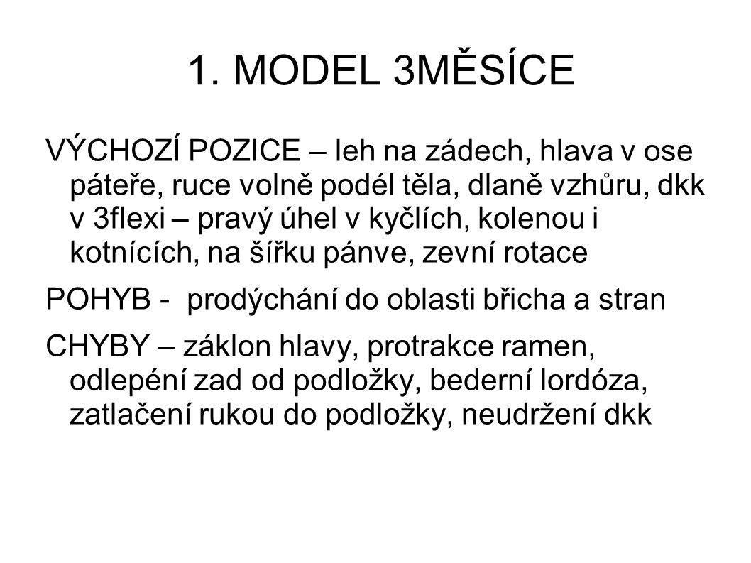 1. MODEL 3MĚSÍCE