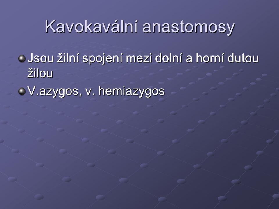Kavokavální anastomosy