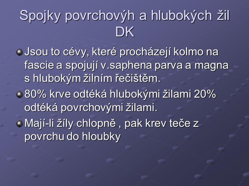 Spojky povrchovýh a hlubokých žil DK