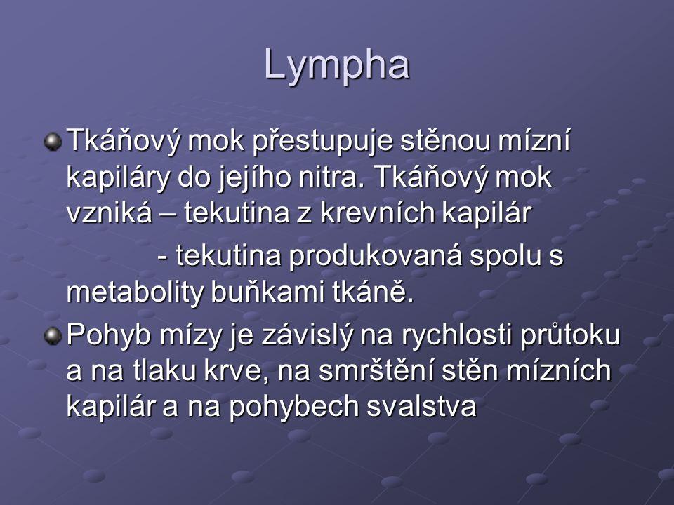 Lympha Tkáňový mok přestupuje stěnou mízní kapiláry do jejího nitra. Tkáňový mok vzniká – tekutina z krevních kapilár.
