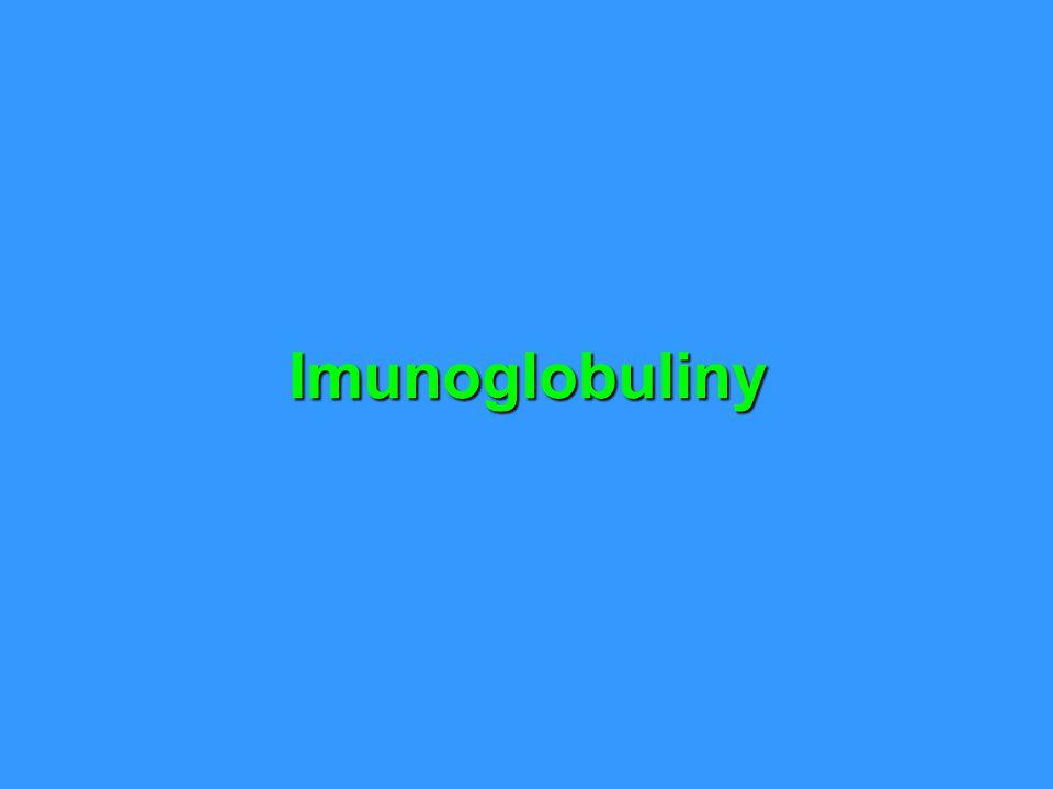 Imunoglobuliny