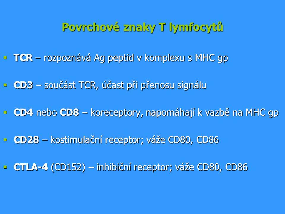 Povrchové znaky T lymfocytů