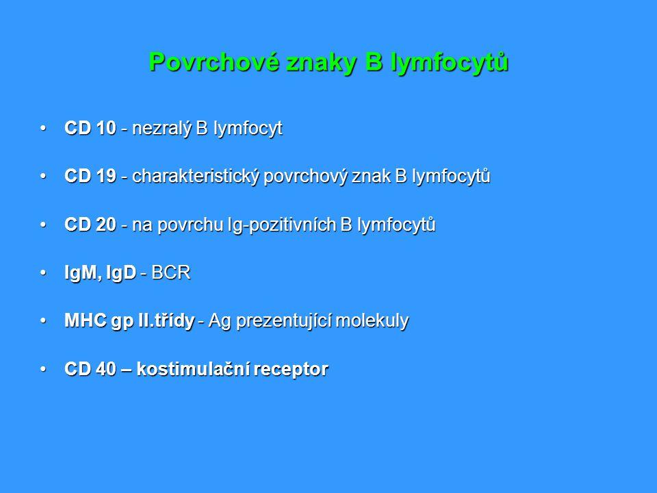 Povrchové znaky B lymfocytů