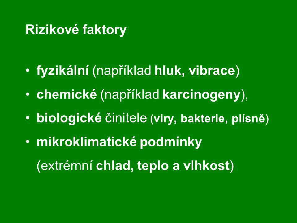 Rizikové faktory fyzikální (například hluk, vibrace) chemické (například karcinogeny), biologické činitele (viry, bakterie, plísně)