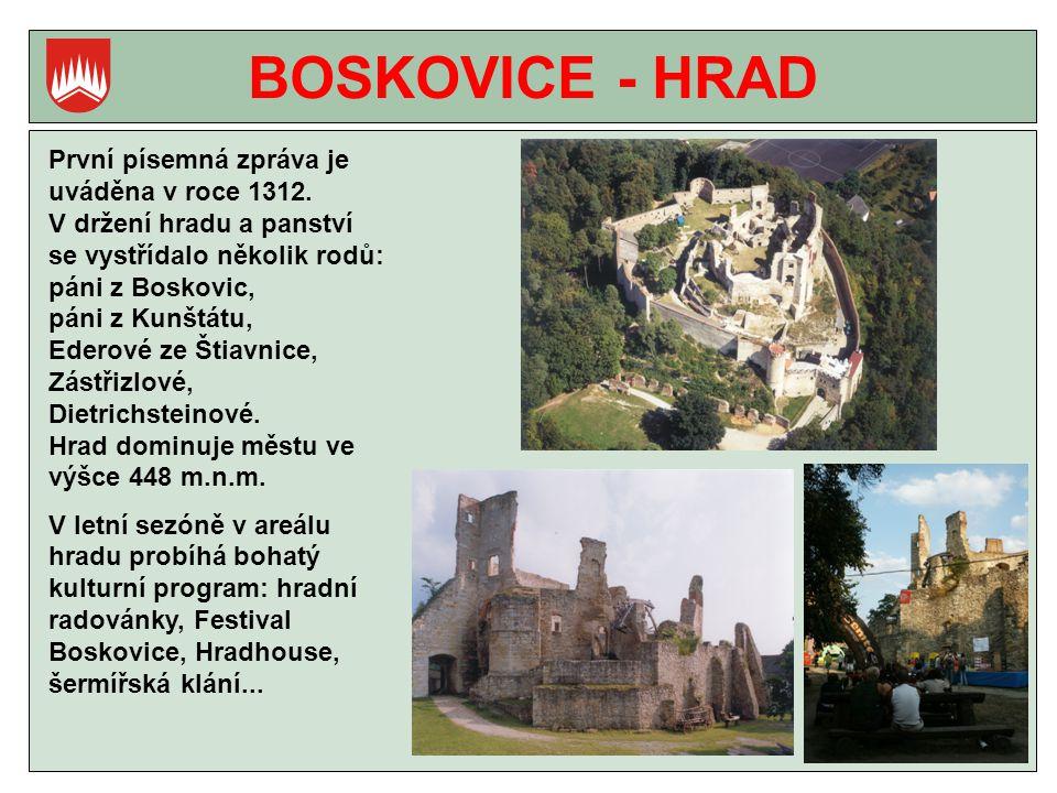 BOSKOVICE - HRAD