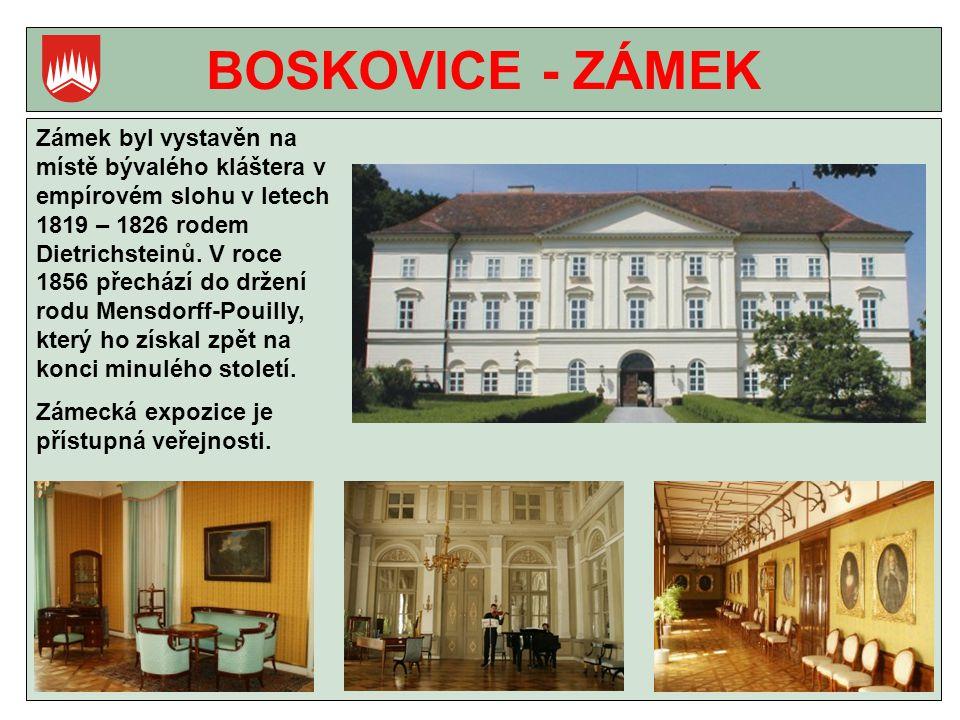BOSKOVICE - ZÁMEK