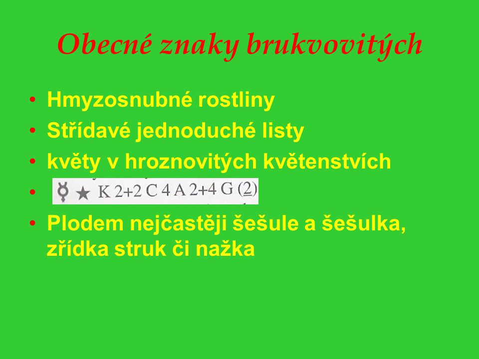 Obecné znaky brukvovitých