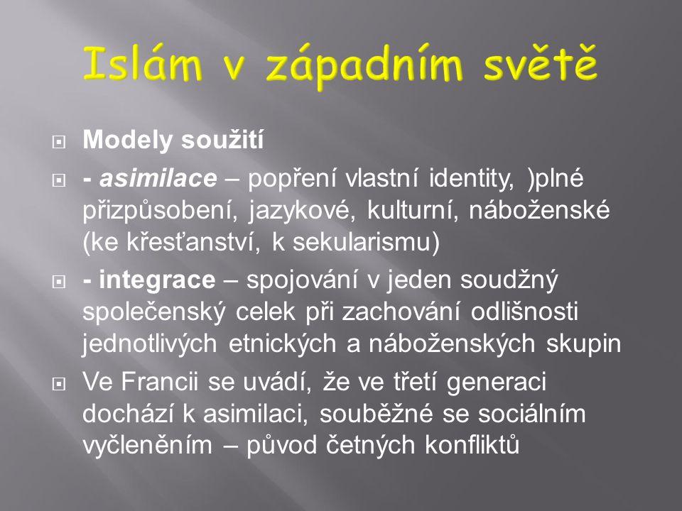 Islám v západním světě Modely soužití