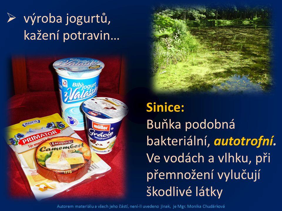 výroba jogurtů, kažení potravin…