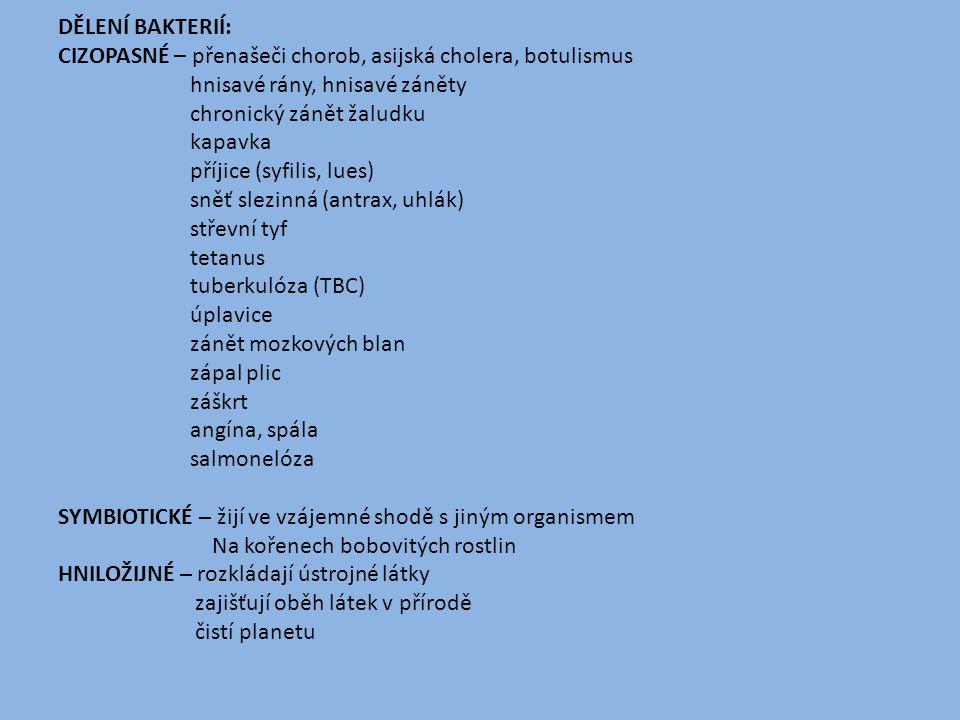 DĚLENÍ BAKTERIÍ: CIZOPASNÉ – přenašeči chorob, asijská cholera, botulismus. hnisavé rány, hnisavé záněty.