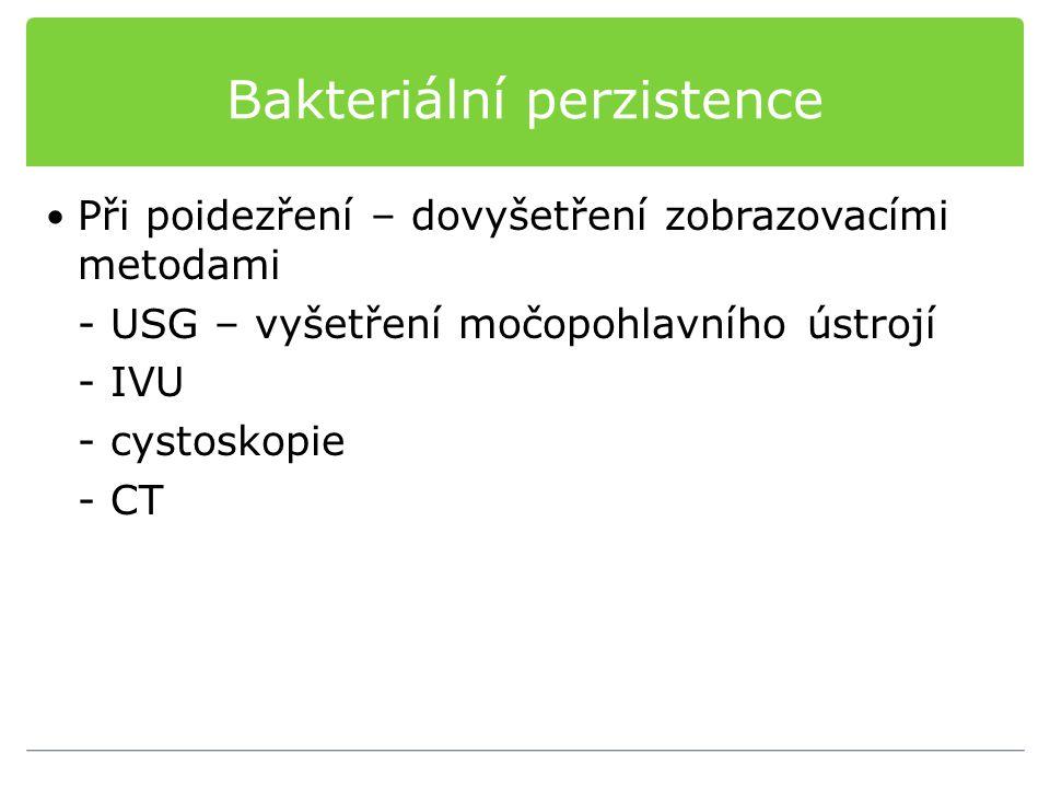 Bakteriální perzistence