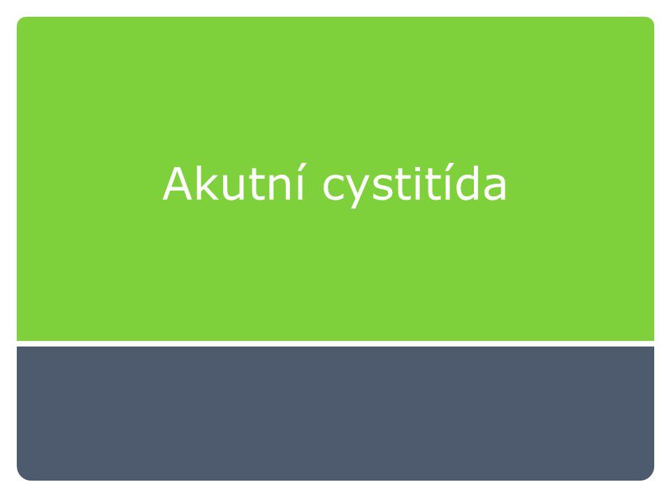 Akutní cystitída