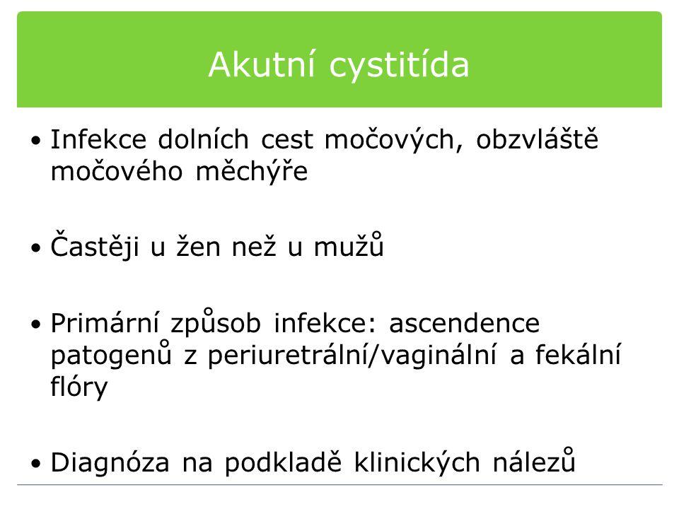 Akutní cystitída Infekce dolních cest močových, obzvláště močového měchýře. Častěji u žen než u mužů.