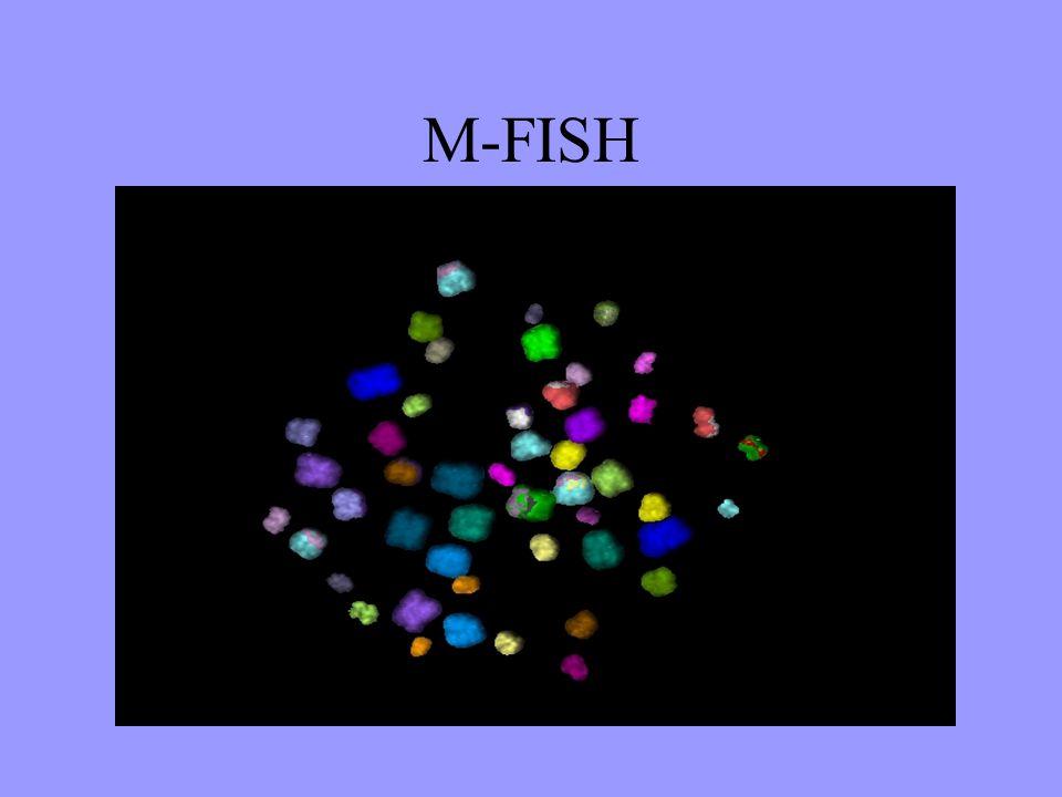 M-FISH