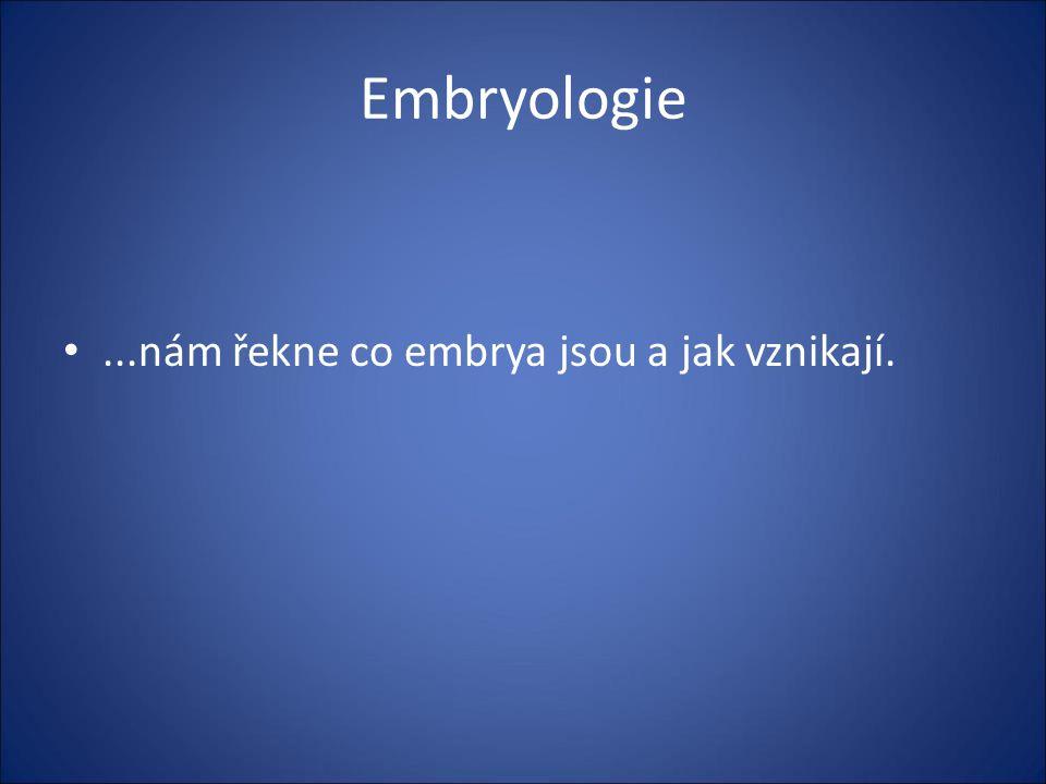 Embryologie ...nám řekne co embrya jsou a jak vznikají.