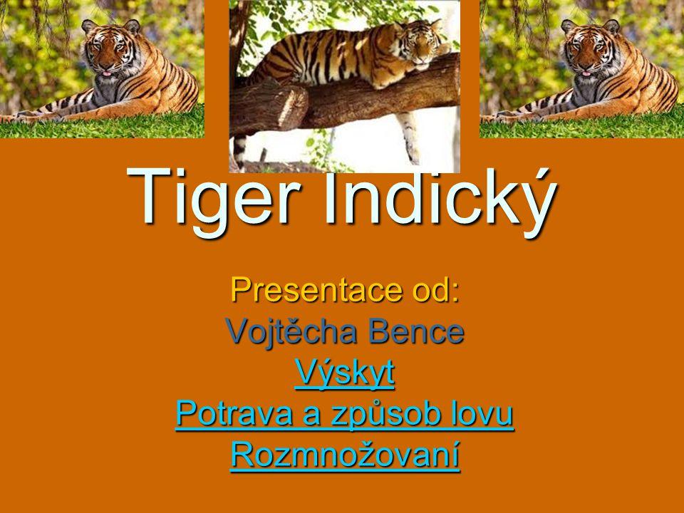 Tiger Indický Presentace od: Vojtěcha Bence Výskyt