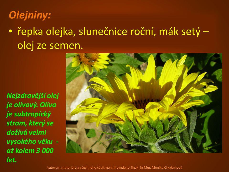 řepka olejka, slunečnice roční, mák setý – olej ze semen.