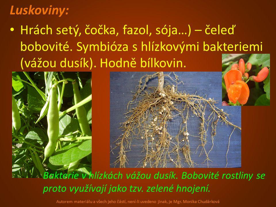 Luskoviny: Hrách setý, čočka, fazol, sója…) – čeleď bobovité. Symbióza s hlízkovými bakteriemi (vážou dusík). Hodně bílkovin.