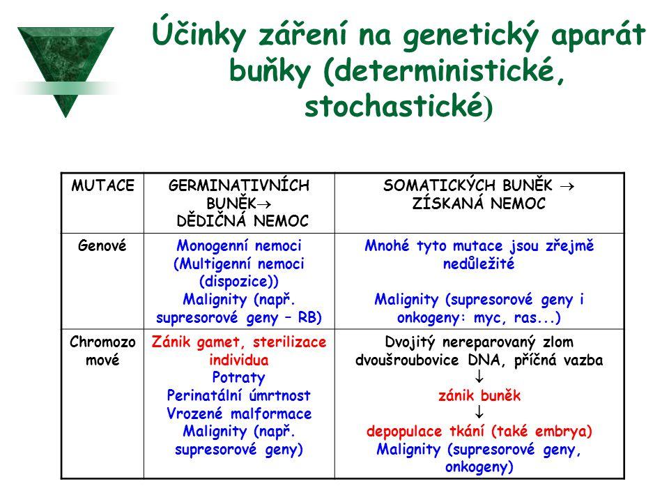 Účinky záření na genetický aparát buňky (deterministické, stochastické)