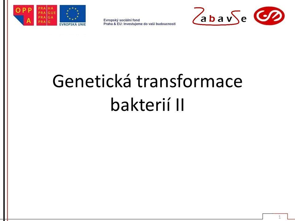 Genetická transformace bakterií II