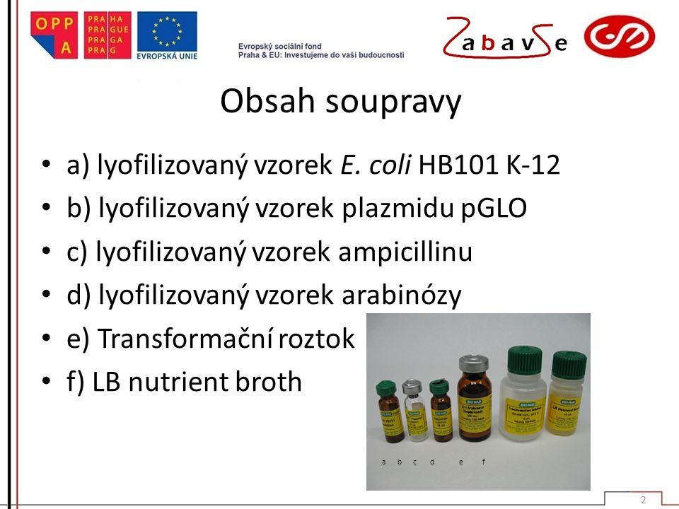 Obsah soupravy a) lyofilizovaný vzorek E. coli HB101 K-12