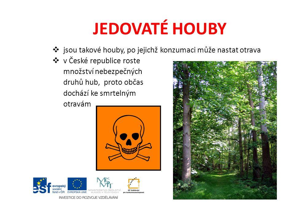 JEDOVATÉ HOUBY jsou takové houby, po jejichž konzumaci může nastat otrava. v České republice roste.
