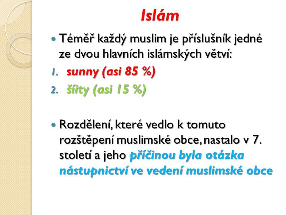 Islám Téměř každý muslim je příslušník jedné ze dvou hlavních islámských větví: sunny (asi 85 %) šíity (asi 15 %)