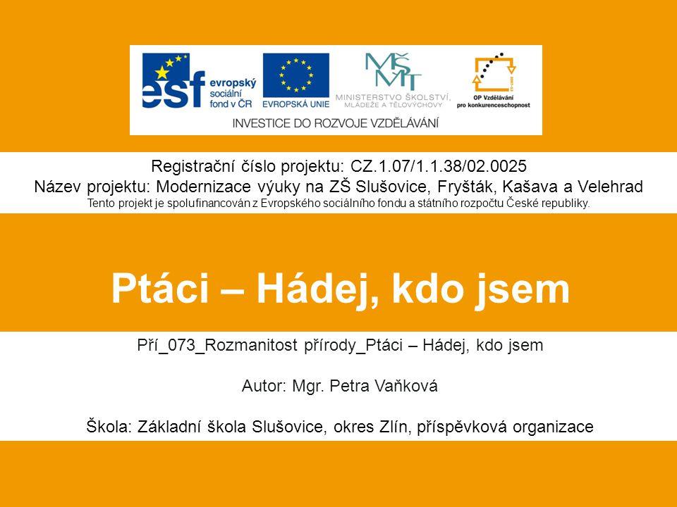 Registrační číslo projektu: CZ.1.07/1.1.38/02.0025