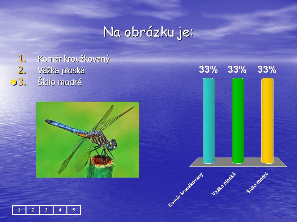 Na obrázku je: Komár kroužkovaný Vážka ploská Šídlo modré 1 2 3 4 5