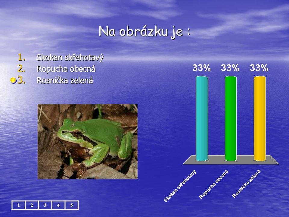 Na obrázku je : Skokan skřehotavý Ropucha obecná Rosnička zelená 1 2 3