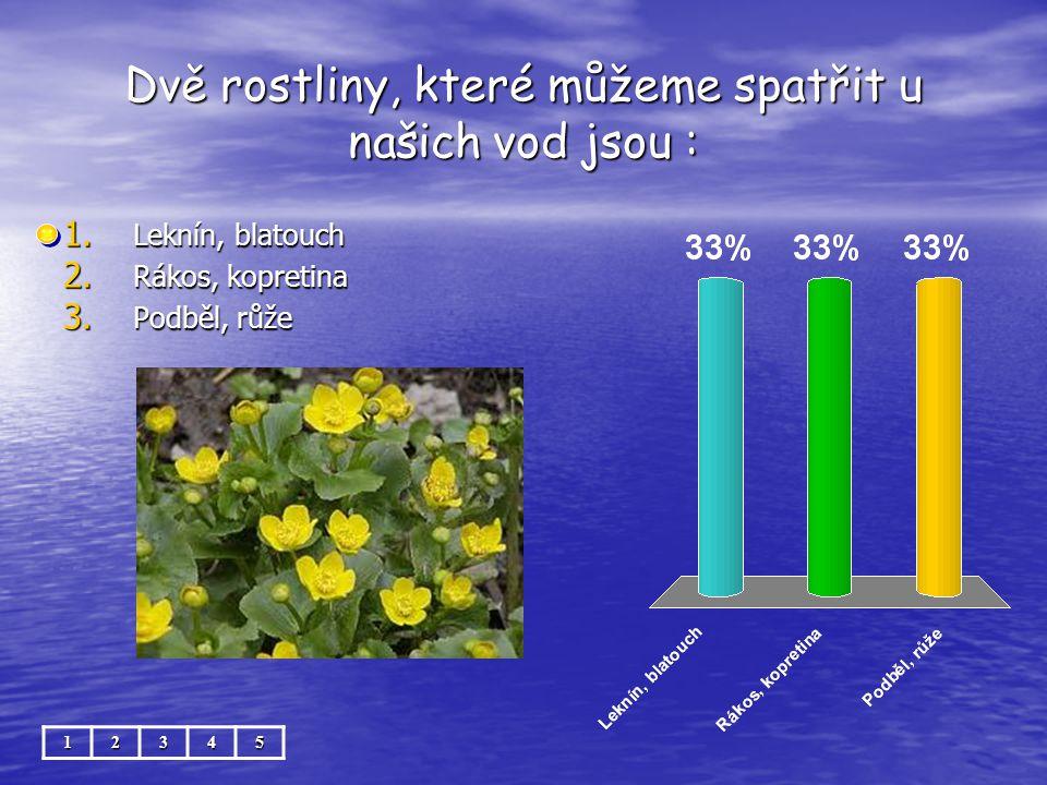 Dvě rostliny, které můžeme spatřit u našich vod jsou :