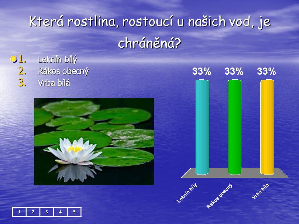 Která rostlina, rostoucí u našich vod, je chráněná