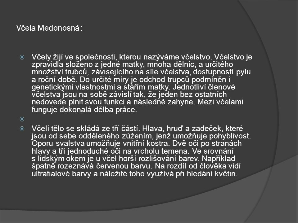 Včela Medonosná :