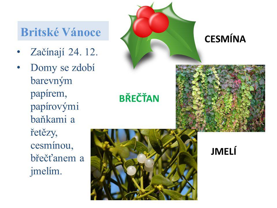 Britské Vánoce CESMÍNA Začínají 24. 12.
