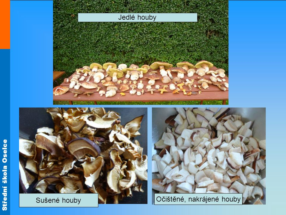 Očištěné, nakrájené houby
