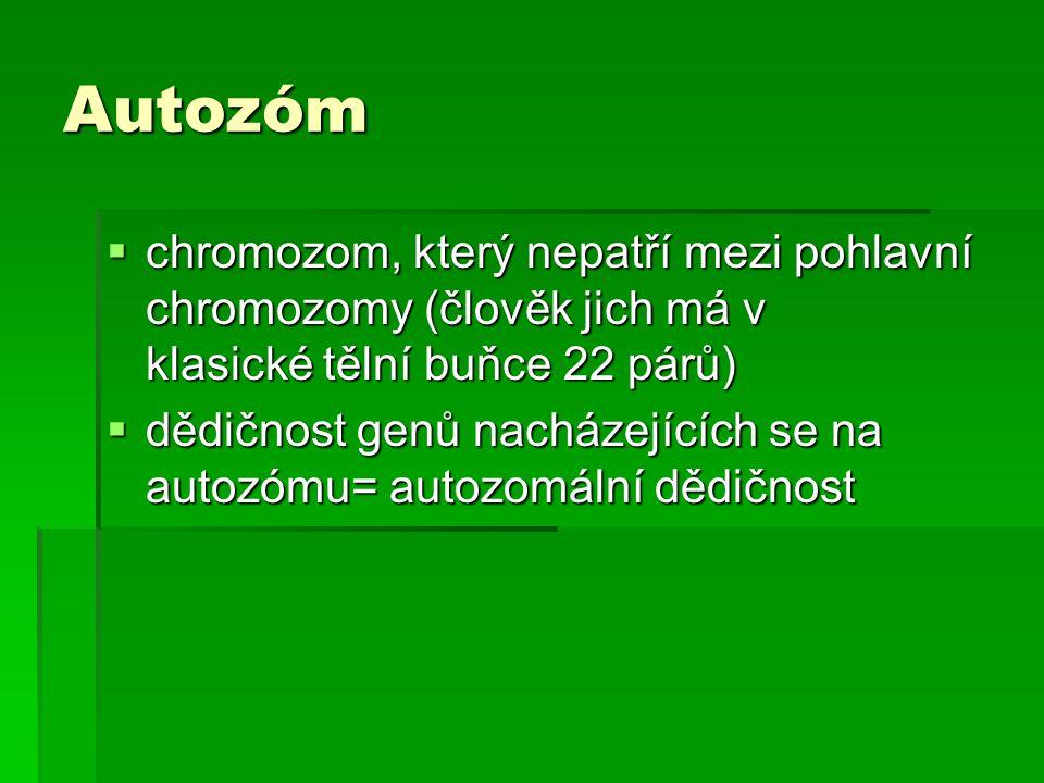 Autozóm chromozom, který nepatří mezi pohlavní chromozomy (člověk jich má v klasické tělní buňce 22 párů)