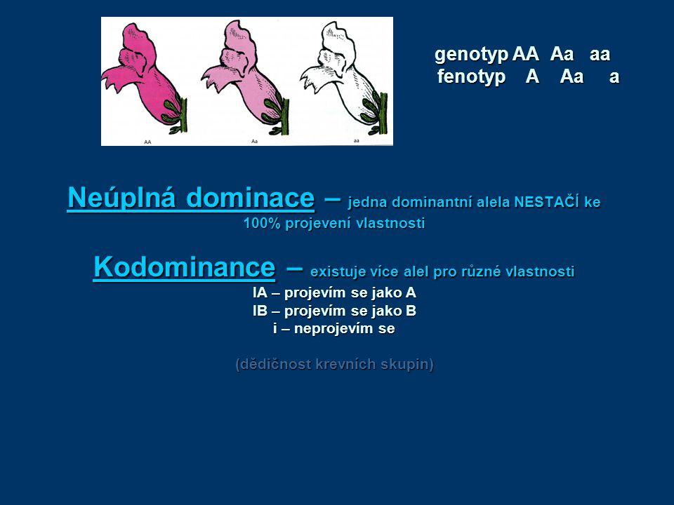 genotyp AA Aa aa fenotyp A Aa a.